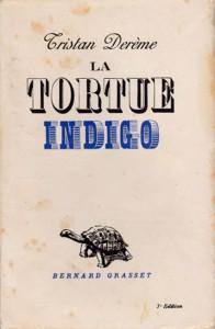 La tortue indigo